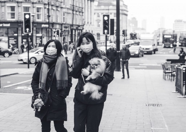 Street Photography and dog